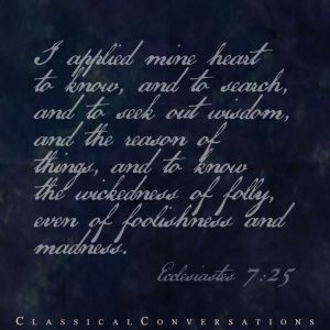 Ecclesiastes 7_25